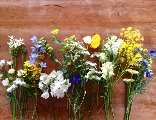 Blumen Übersicht