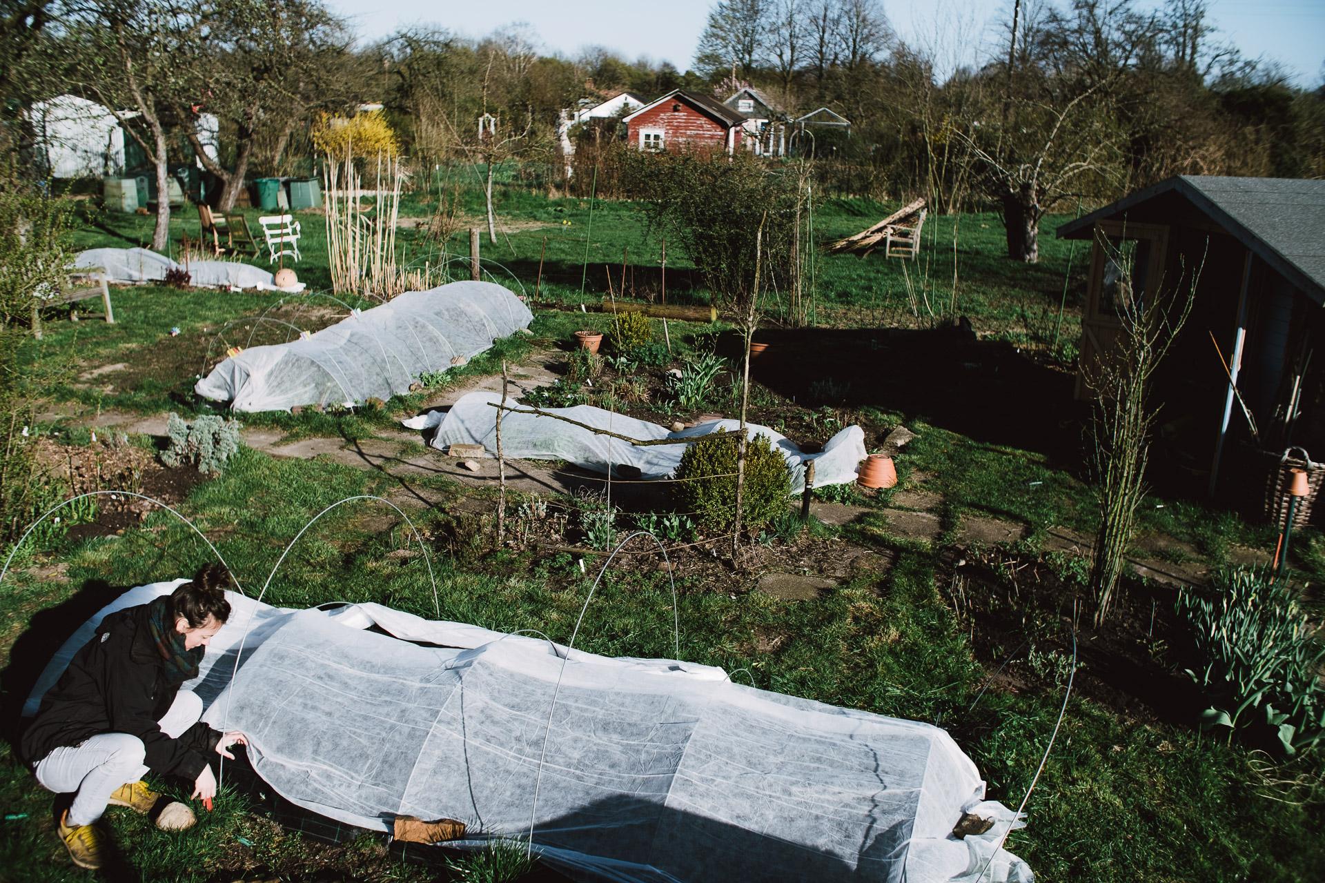 Bell Schutz in Bettgestell Metallica für Schützen Pflanzen Blumen in Garten